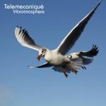 Telemecaniquè - Vibratmosphere (2011)